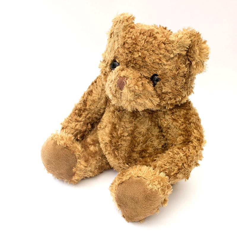 Good Luck Teddy Bear